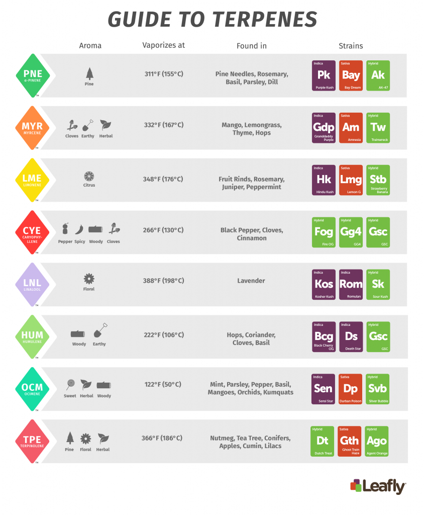 Leafly terpenes chart not for sale
